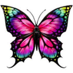 Coll butterflies monarch.png