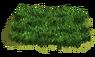Grasslands lvl7