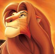 Simba erwachsen