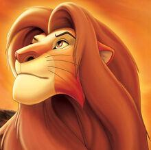 Simba erwachsen.jpg