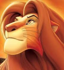 Simba; erwachsen.jpg