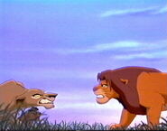 087 - zira and simba confront each other