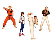 Art of Fighting Team99