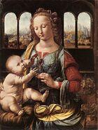 Madonna z goździkiem