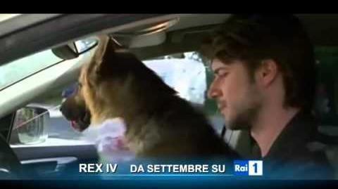 Rex IV (stagione 14) - Da settembre su Rai Uno