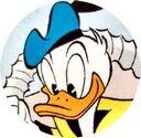 Donald Duck par Gattino.jpg