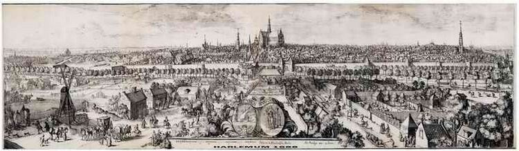 Haarlem zicht1.jpg