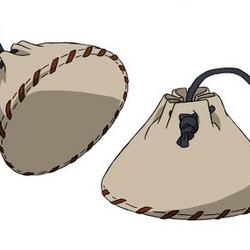 Suicide Bag
