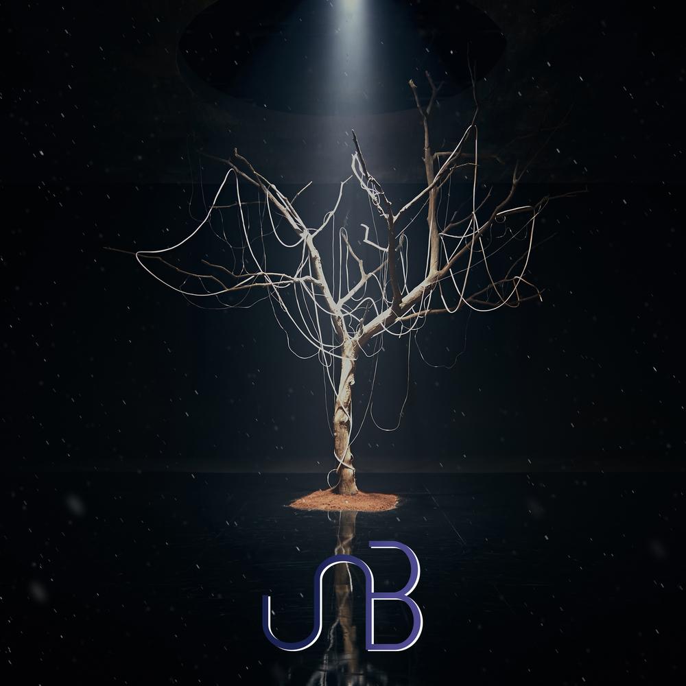 Boyhood (UNB)