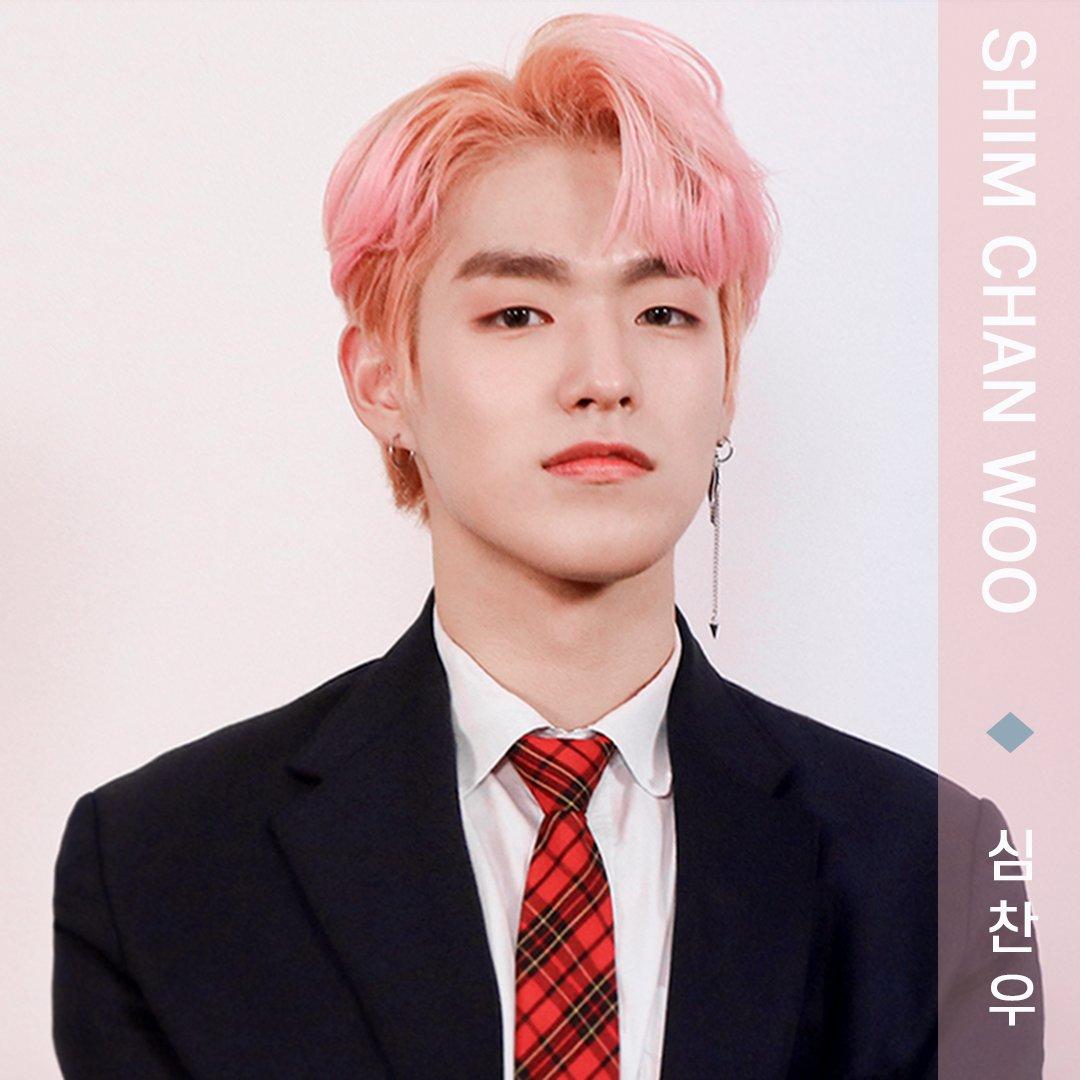 Shim Chan Woo
