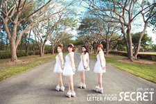 Secret Letter From Secret group photo