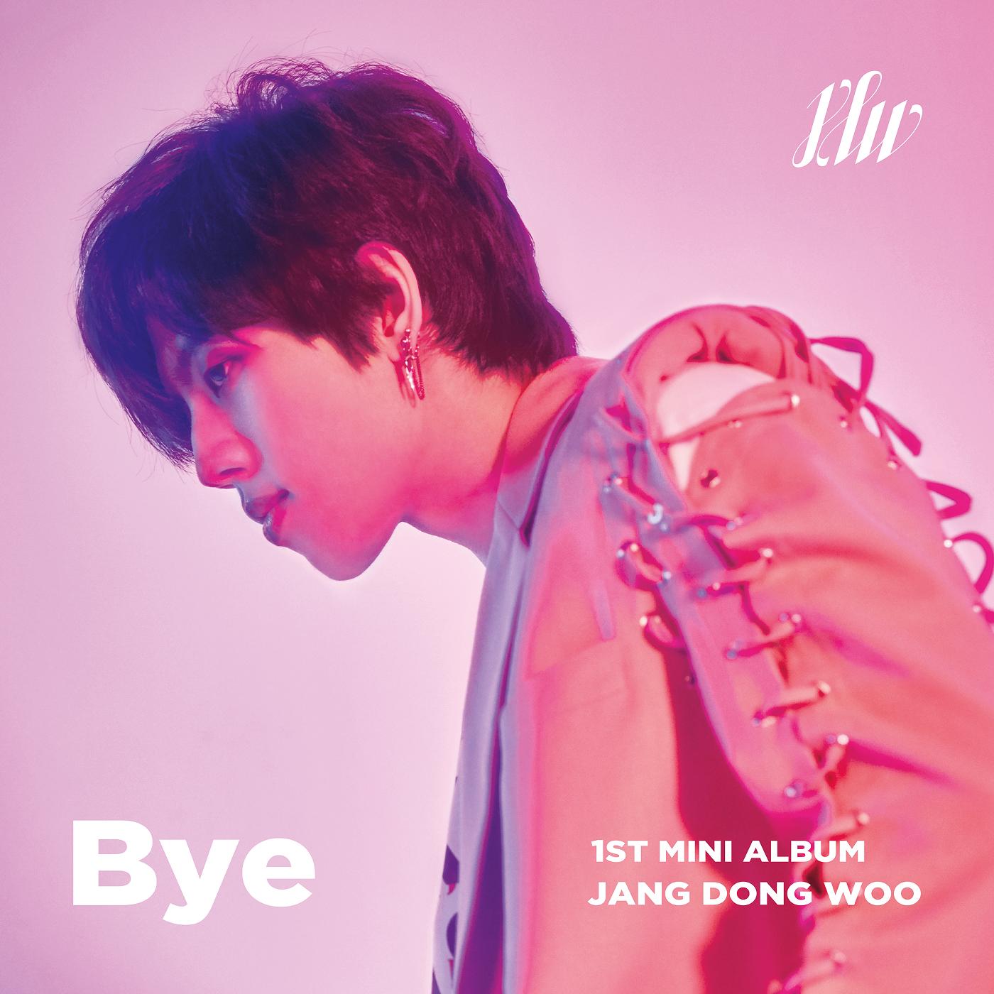 Bye (Jang Dong Woo)