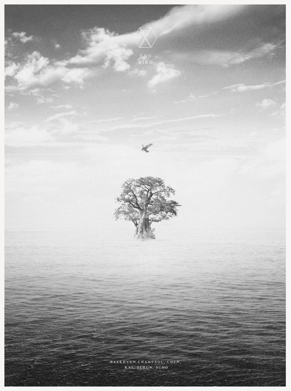 EXO Bird physical cover art.png