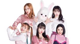 PinkFantasy profile picture 2020 1