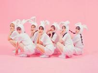 PinkFantasy Iriwa group concept photo