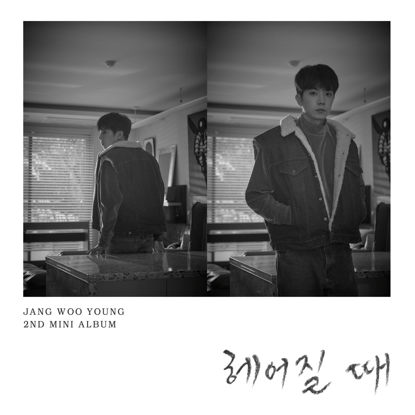Bye (Jang Woo Young)