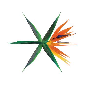 Digital <small>(Korean)</small>