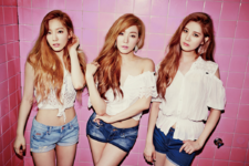 Girls' Generation-TTS Holler group