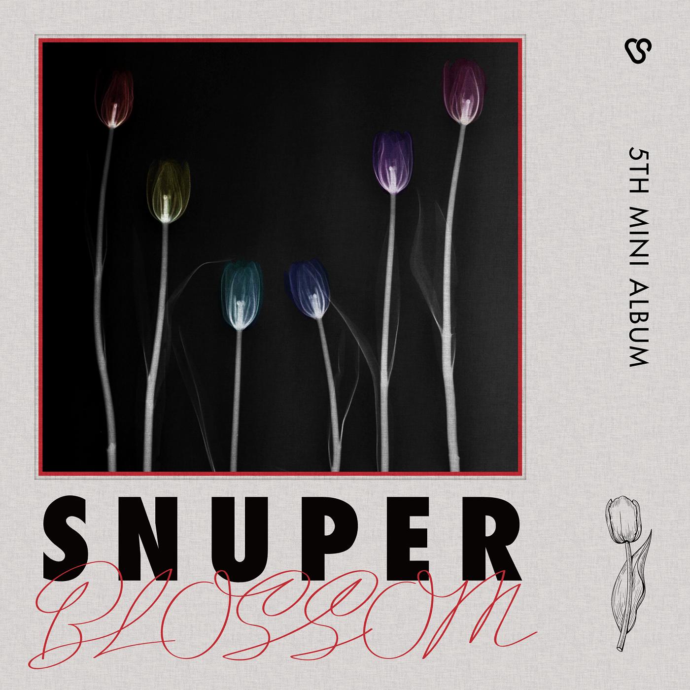 Blossom (SNUPER)