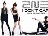 I Don't Care (Baek Kyoung Remix)