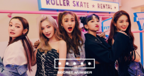 SECRET NUMBER Who Dis group concept photo 1