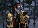 Skeleton Guards