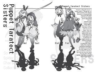 Light Novel (Disguise)