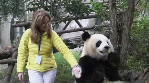 Kung Fu Panda 2 (2011) - Featurette Animating Pandas