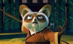 Meester Shifu.jpg