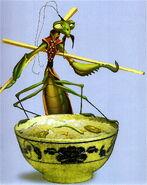 MantisConcept2