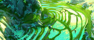 Panda-village-concept4