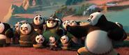 Po-teaches-the-pandas