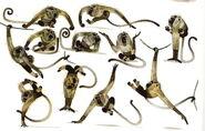 MonkeyConcepts2