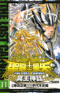 The Lost Canvas 11