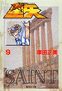 Saint Seiya 9