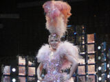 Showgirl: The Homecoming Tour