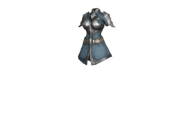 Elf Wolfknights Armor 1.png