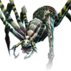 Swamp Venomous Spider.png