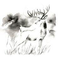 Deer (TCG)