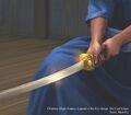 Kakita Blade by Shen Fei.jpg