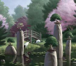 Bonsai Garden by Derek D. Edgell.jpg