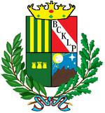 Escudo de la ciudad