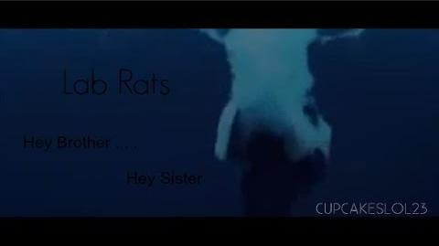 Lab Rats Hey Brother . .