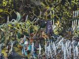 Batalla de Withelan