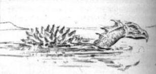 Dibujo Dragón tortuga.jpg