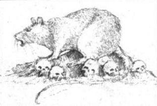 Rata gigante dibujo.jpg