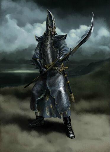 Guerrero Elfo Oscuro por Gergely Fejervary Warhammer Mark of Chaos.jpg