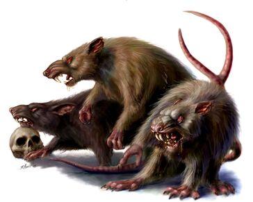 Ratas Gigantes por Britt Martin.jpg