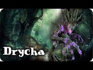 📚¿Quién es DRYCHA? (LORE - TRASFONDO) Conociendo a los personajes de Warhammer Fantasy