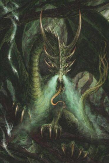 Dragon forestal octava.jpg